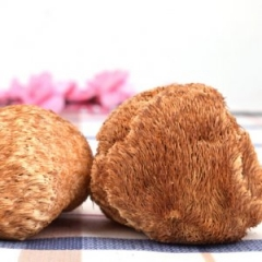 运福猴头菇188克东北特产干货